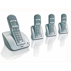CD1304S/05 -    Cordless telephone