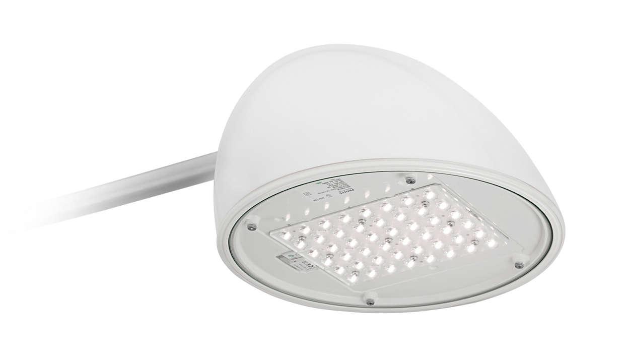 CitySwan LED
