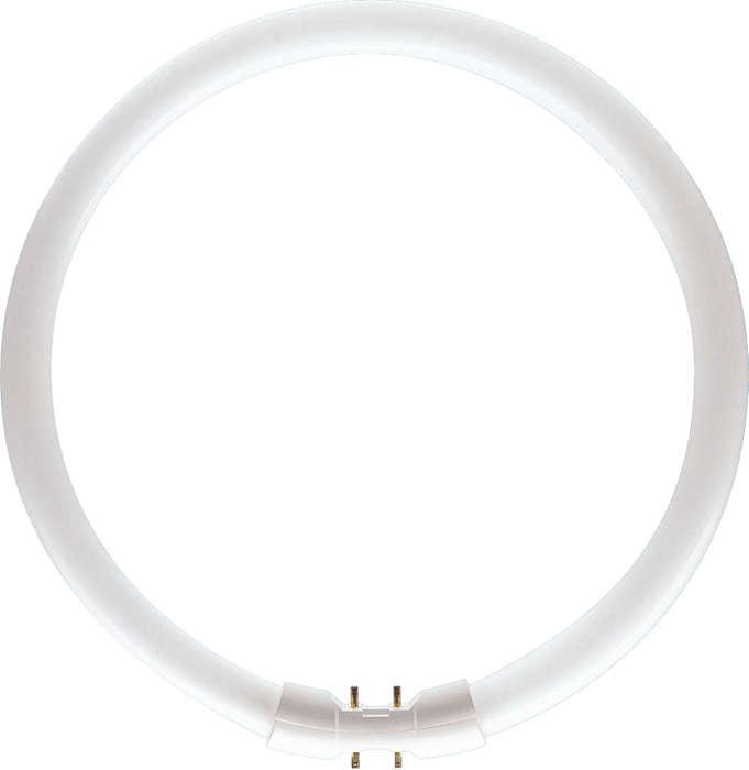 T5 Circular