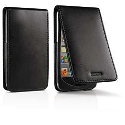 Custodia a portafoglio