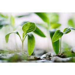 Sustainability CO2 compenseren