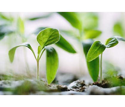 CO2-uitstoot compenseren
