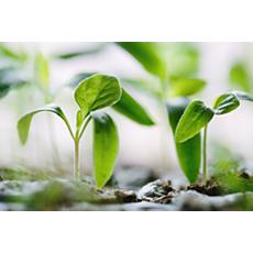 ECC0/09604 Sustainability CO2-Kompensation