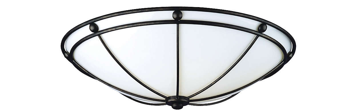 Captivo 2-light Ceiling in Bronze Luster finish