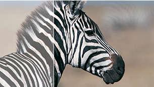 Rapporto di contrasto dinamico 40000:1 per dettagli in tonalità di nero davvero incredibili