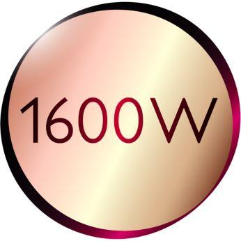 1600W,溫和吹整
