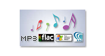 Lossless format (FLAC), MP3 and WMA playback
