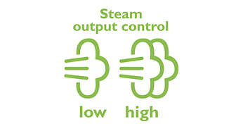 Steam output control