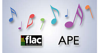 FLAC and APE lossless codec support for precise sound quality
