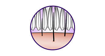High performance discs gently remove even finest hairs