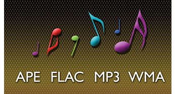 APE, FLAC, MP3 and WMA lossless code for precise sound
