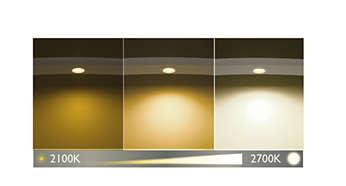 DimTone — создайте особую атмосферу, используя различные оттенки света