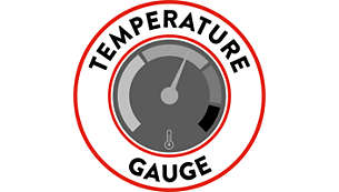 Boiler temperature gauge for full control