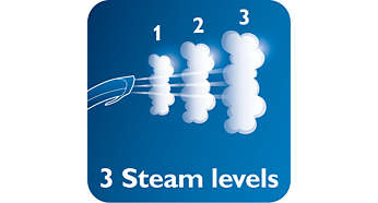 3 steam levels