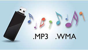 Savuraţi muzica MP3 sau WMA direct din dispozitive USB portabile
