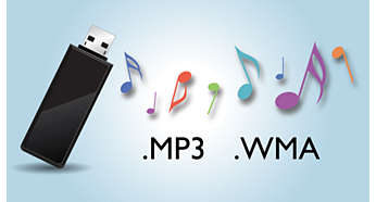 Enjoy MP3/WMA music directly from your portable USB devices
