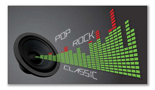 Digital Sound Control voor optimale muziekstijlinstellingen