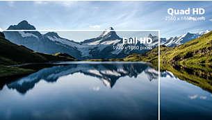 Kristallklare Bilder mit Vierfach-HD und 2.560x1.440 Pixeln