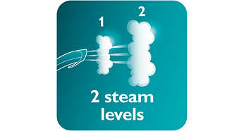 2 steam levels