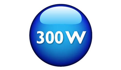 Leistungsstarker 300W-Motor