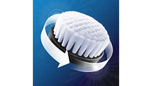 Oil-control cleansing brush head