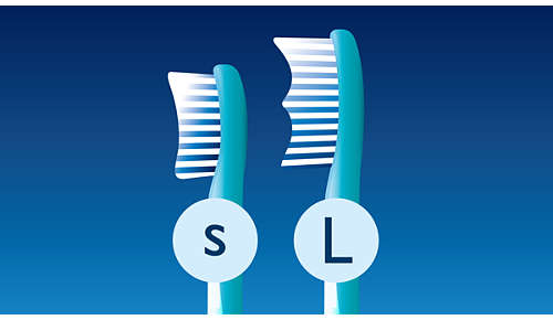 2 brush head sizes available