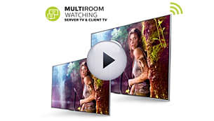 Multiroom TV—share live TV and recordings between TVs