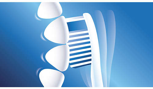 Angled brush head for better access to back teeth