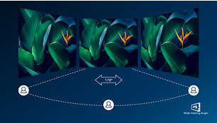 IPS technology for full colours and wide viewing angles