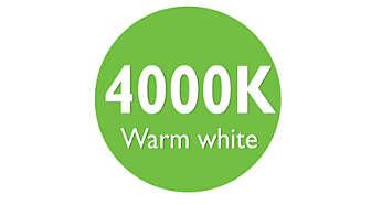 Helles, warmweißes Licht mit 4000 K
