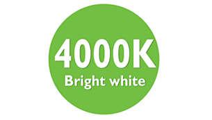 Luz branca brilhante de 4000 K
