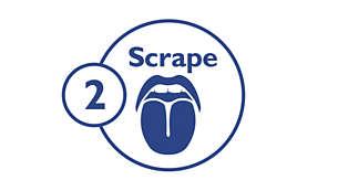 Step 2: Scrape