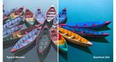 驚異的に鮮やかな色を再現する量子ドットテクノロジー