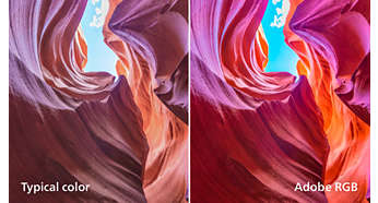 Standarde pro color 99% AdobeRGB, 100% sRGB