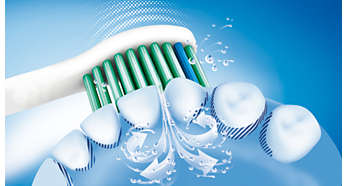 Sonicare dynamic cleaning action drives fluid between teeth