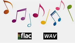 Unterstützt verlustfreie Audioformate für klaren und authentischen Sound