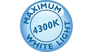 การขับขี่แบบพรีเมี่ยมด้วยเอฟเฟกต์ Xenon แสงสีขาวสว่างเจิดจ้า