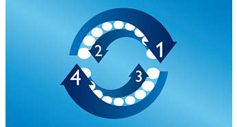 4-Quadranten-Timer