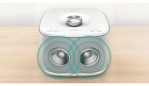 2 x 2,5 inch drivers met baspoort voor kamervullend geluid