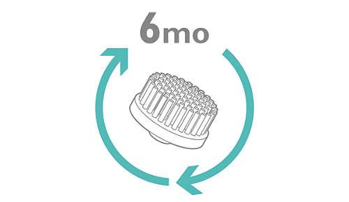 Vervang de opzetborstel iedere 6 maanden voor hygiënisch gebruik