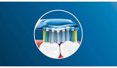 AdaptiveClean-børstehodet bøyer seg langs tannkjøttkanten