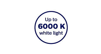 6000 Kelvin color temperature for crisp white light