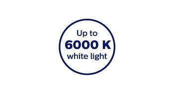 6000 Kelvin color temperature for crisp white light