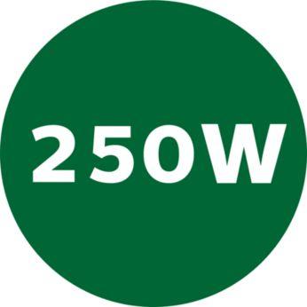 250 W powerful motor