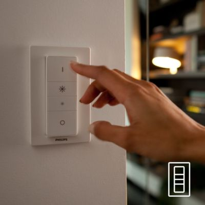 Hue dimmer switch included