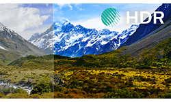 HDR Plus более контрастное, яркое и детализированное изображение