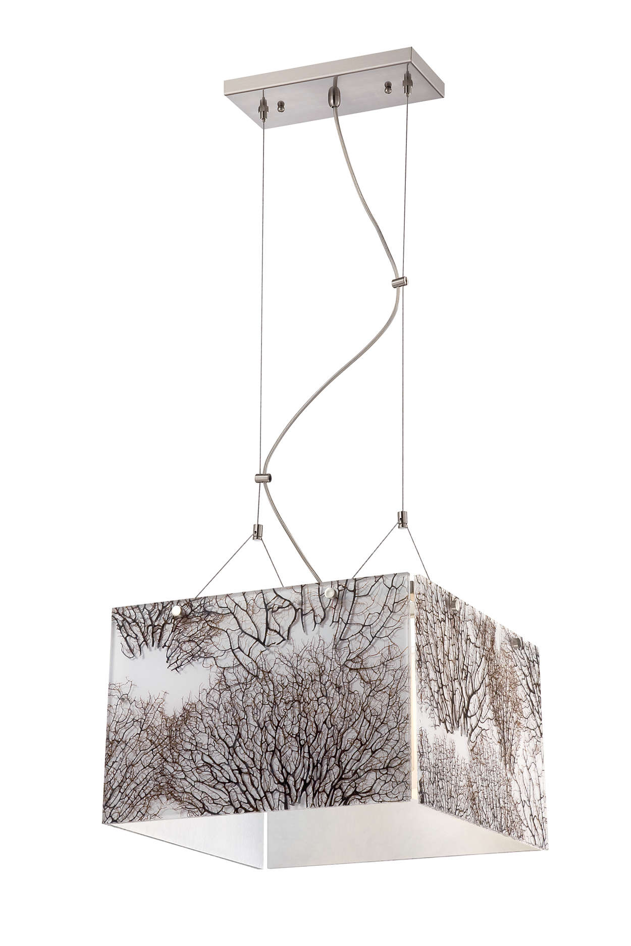 Ecoframe 4-light pendant in Satin Nickel finish