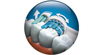 Почиства видимите повърхности на зъбите