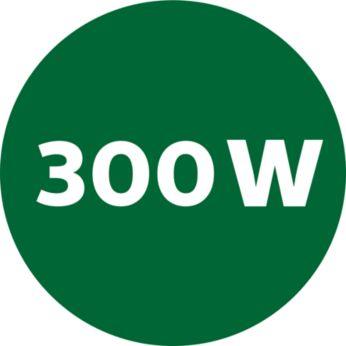 Potente motor de 300W