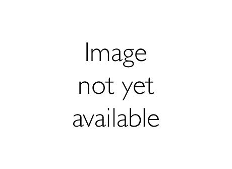 ZBS417 EP-A RAL9010 SET